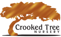 Crooked Tree Nursery Logo